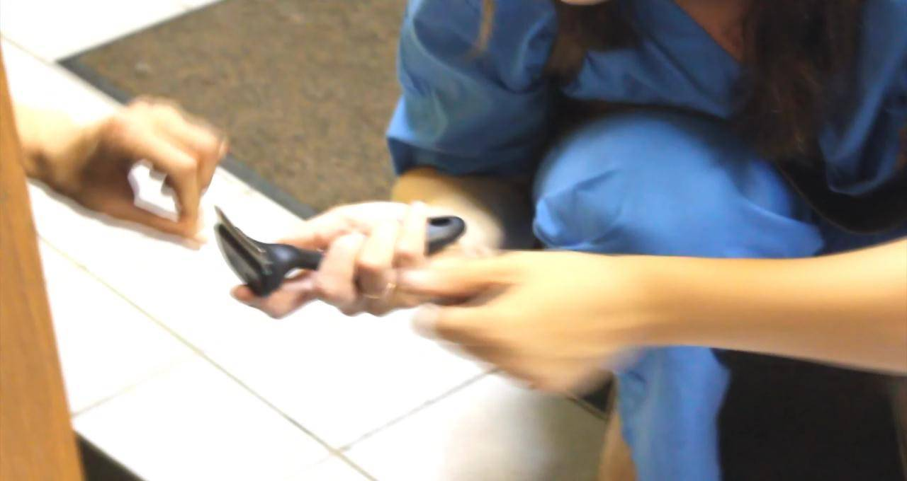 Лабрадор стрижка когтей, подбор фуминатора.wmv_snapshot_01.53_[2013.06.11_16.08.05]