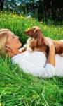Комфортная жизнь с собакой — как всем угодить