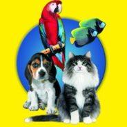 XXII международная выставка товаров и услуг для домашних животных «Зоосфера 2013»!
