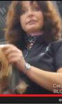 Мастер-класс от Шонны Бернарди (Канада) «Длинная стрижка йоркширского терьера»