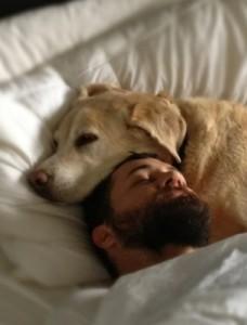 sleep-dog-1