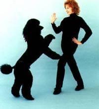 фристайл, собачий вальс, собака танцует, танцы собак,